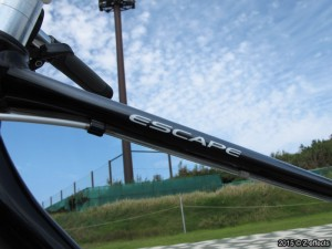 GIANT ESCAPE R3 2015 ブラックトーン